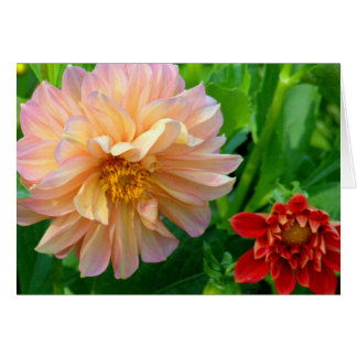 CREAMY YELLOW AND PALE PINK DAHLIA NOTE CARD