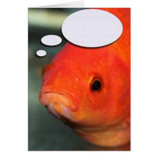 Create Your Own Caption, Goldfish Greeting Card