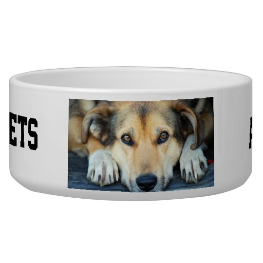Create your own pet bowls