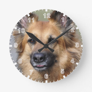 Create your own pet photo wall clock