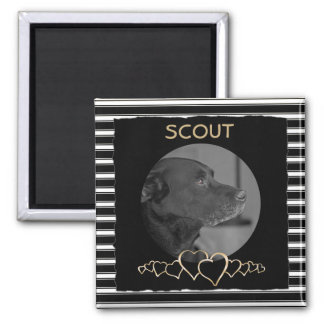 Create Your Own Photo | Personalized Pet Keepsake Square Magnet
