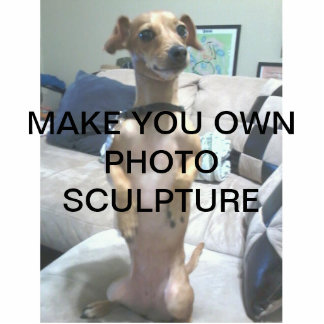 Create Your Own Photo Sculpture