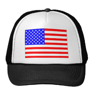 Create your own Political Hat