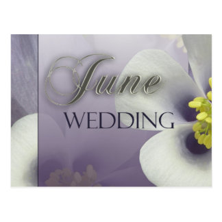 Create your own purple June Wedding Postcard
