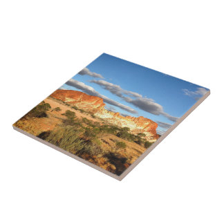 Create your own square tile - Australian outback