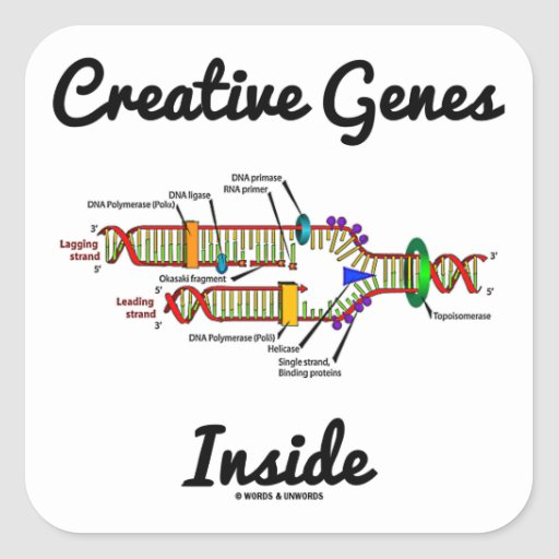 Creative Genes Inside (DNA Replication) Sticker