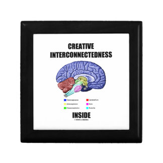 Creative Interconnectedness Inside (Brain) Trinket Boxes