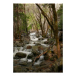 Creek At Bridal Veil Falls, Yosemite Poster