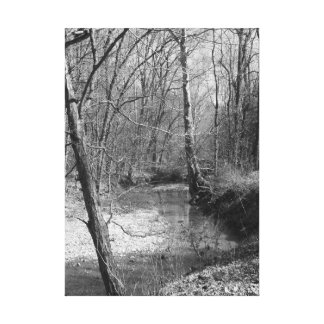 Creek bed canvas print