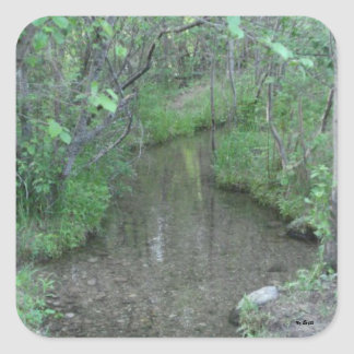Creek Square Stickers