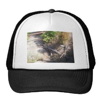 Creek (wetumka) cap