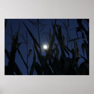 Creepy Corn Maze Poster