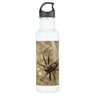 Creepy Crawly Spider 710 Ml Water Bottle
