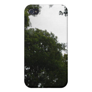 Creepy Forest  Cover For iPhone 4