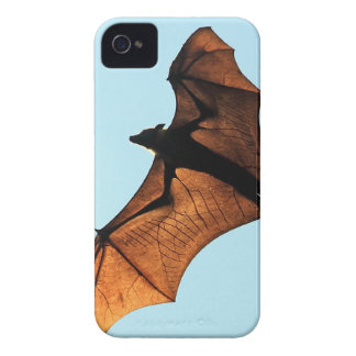 Creepy halloween flying fox (fruit bat) iPhone 4 case