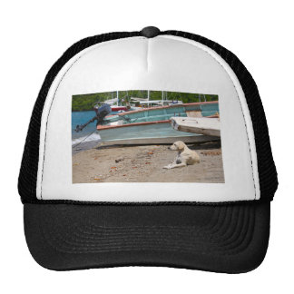 Creole dog cap