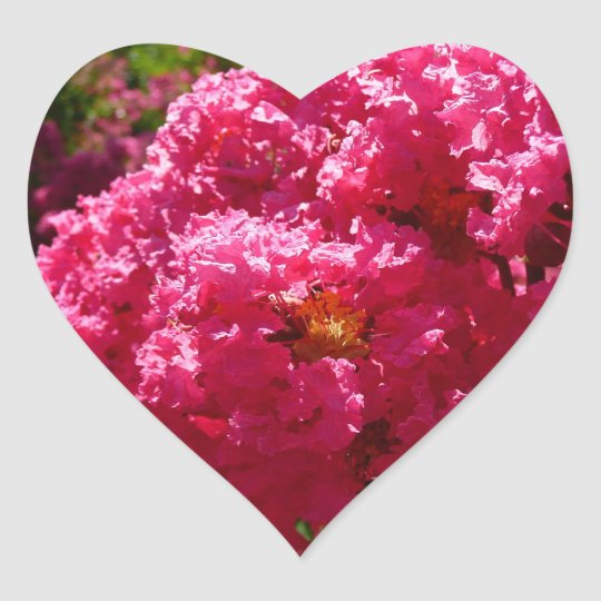 Crepe Myrtle Tree Magenta Flowers Heart Sticker