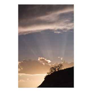 Crepuscular rays radiate across the sky at photo print