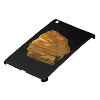Crested Barite on Black iPad Mini Case