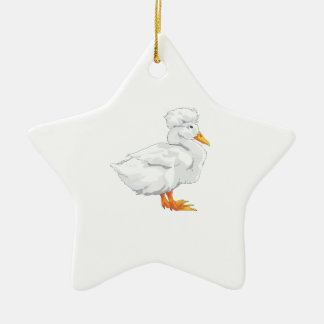 CRESTED DUCK CERAMIC STAR DECORATION