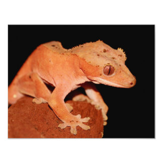crested gecko 11 cm x 14 cm invitation card