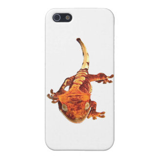 Crested Gecko iphone case Cover For iPhone 5/5S
