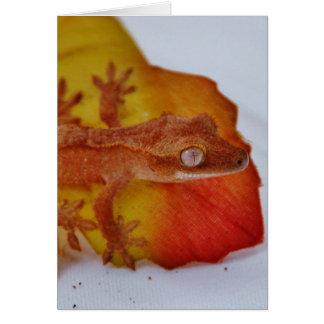 Crested Gecko on a Leaf Card