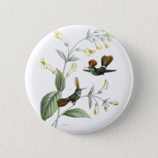 Crested Hummingbirds 6 Cm Round Badge