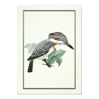 "Crested Kingfisher 5"" X 7"" Invitation Card"