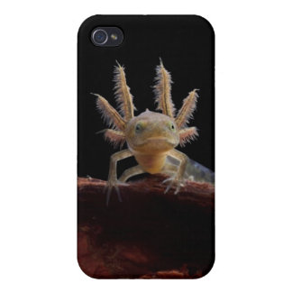 Crested newt larve cases for iPhone 4
