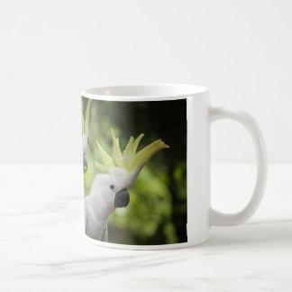 Crested Parrot Coffee Mug