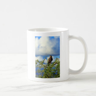 Crested serpent eagle basic white mug