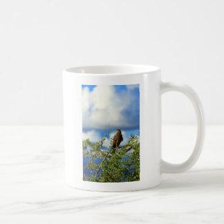 Crested serpent eagle basic white mug