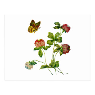 Crewel Embroidered Irish Clover Postcard