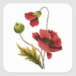 Crewel Embroidery Red Poppy Stickers