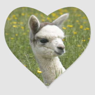 Cria In Buttercups Heart Sticker