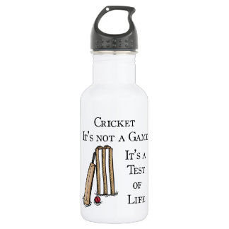 Cricket 532 Ml Water Bottle
