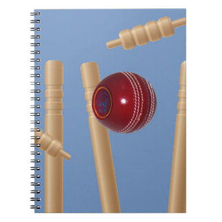 Cricket Ball And Stumps, Notebooks