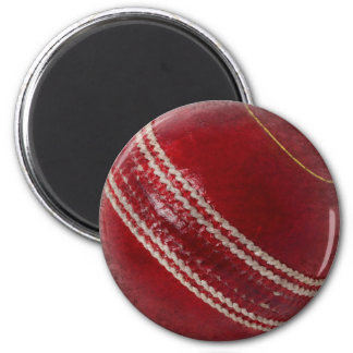 CRICKET BALL MAGNET