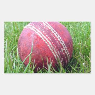 Cricket Ball Rectangular Stickers