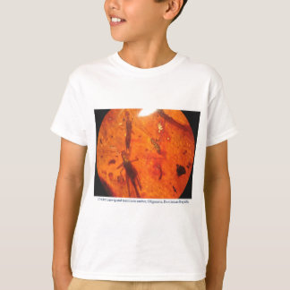 cricket, earwig and termite in Dominican amber T-Shirt