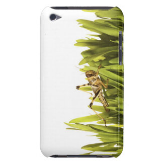 Cricket in wheat grass barely there iPod covers