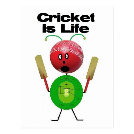 Cricket is Life Postcard