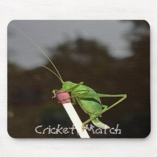 Cricket Match Mouse Mat