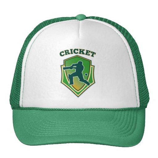 cricket player batsman batting shield hats