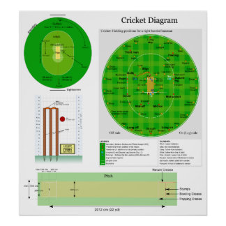 Cricket Position Field Pitch and Wicket Diagram Poster
