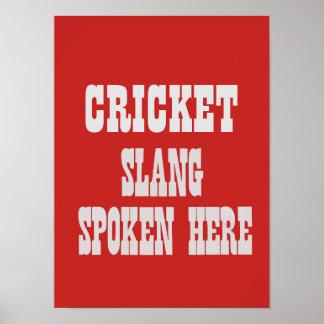 Cricket slang poster