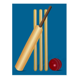 Cricket Sport Postcard