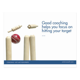Cricket Sports Postcard