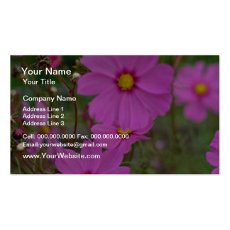 Crimson Cosmos flowers Business Cards
